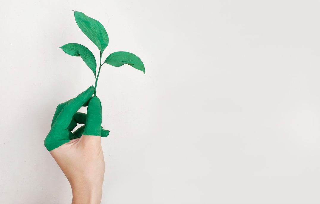 La bioéconomie : Une économie qui vise l'utilisation efficace des ressources naturelles