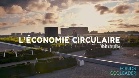 Plongez dans l'univers de l'économie circulaire: l'exemple des drêches des microbrasseries montréalaises!