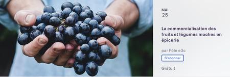 Séminaire HEC Montréal | La commercialisation des fruits et légumes moches en épicerie