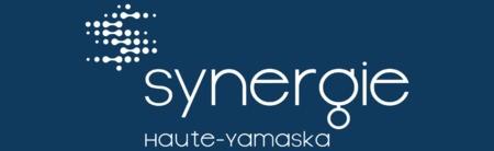 21 participants et 18 synergies potentielles lors du premier atelier de maillage de Synergie Haute-Yamaska