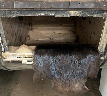 Le conditionnement des résidus du bois pour une fourrure encore plus écologique