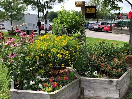 Transformation de déchets de production en vermicomposte pour alimenter nos jardins pollinisateurs